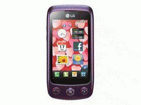 LGGS500